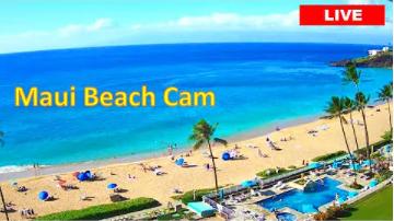 maui beach cam